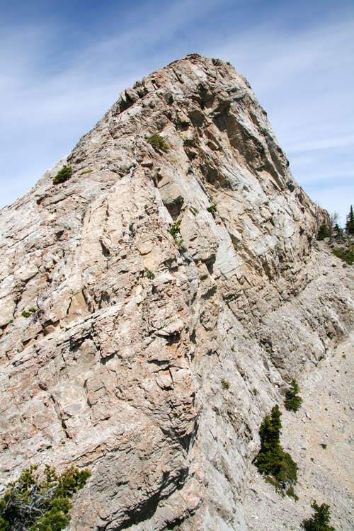 Cave Mountain-- Summit Ridge