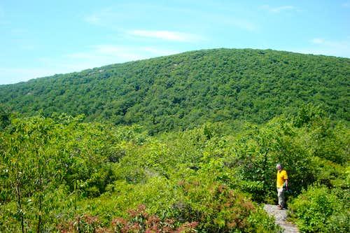 Mount Frissell (Southwest Shoulder)