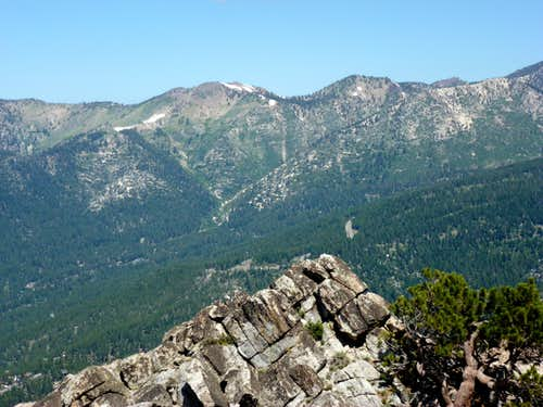 Rose Knob Peak and Peak 9773 from Peak 8703