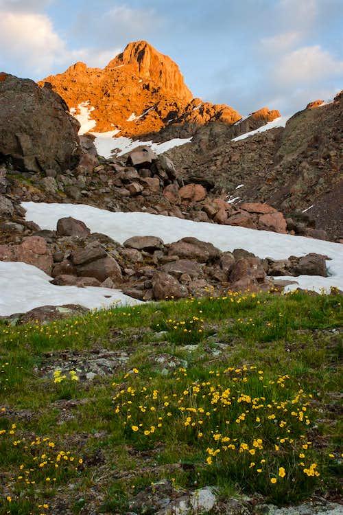 Wetterhorn Peak Alpenglow