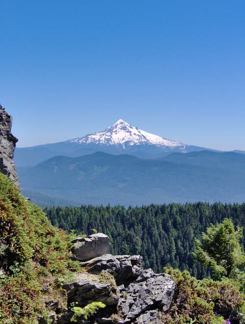 Mt. Hood from Larch Mountain
