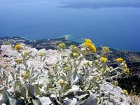 Vidova gora panorama 1