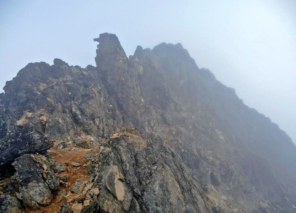 Looking Back at the Summit of Mount Logan