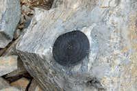 Hyndman Peak USGS