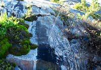 Microspring East of Thousand Island Lake