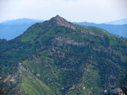 Kessler Peak from Sundial Peak