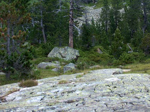 Granite polished by ice erosion