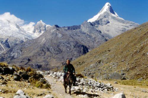 Artesonraju from Quebrada Santa Cruz