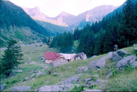 Above the Valea Sambatei...