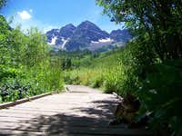 the maroon bells and a cat.