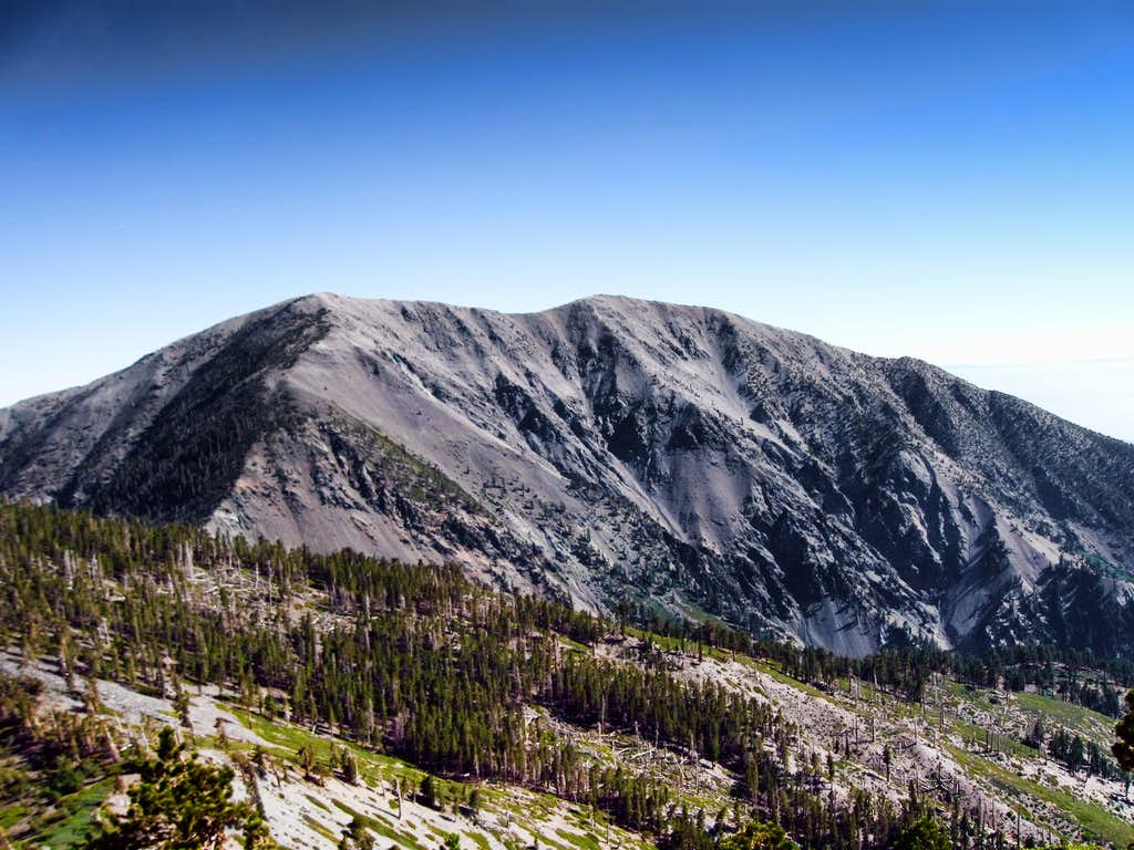 Mount Baldy via North Backbone