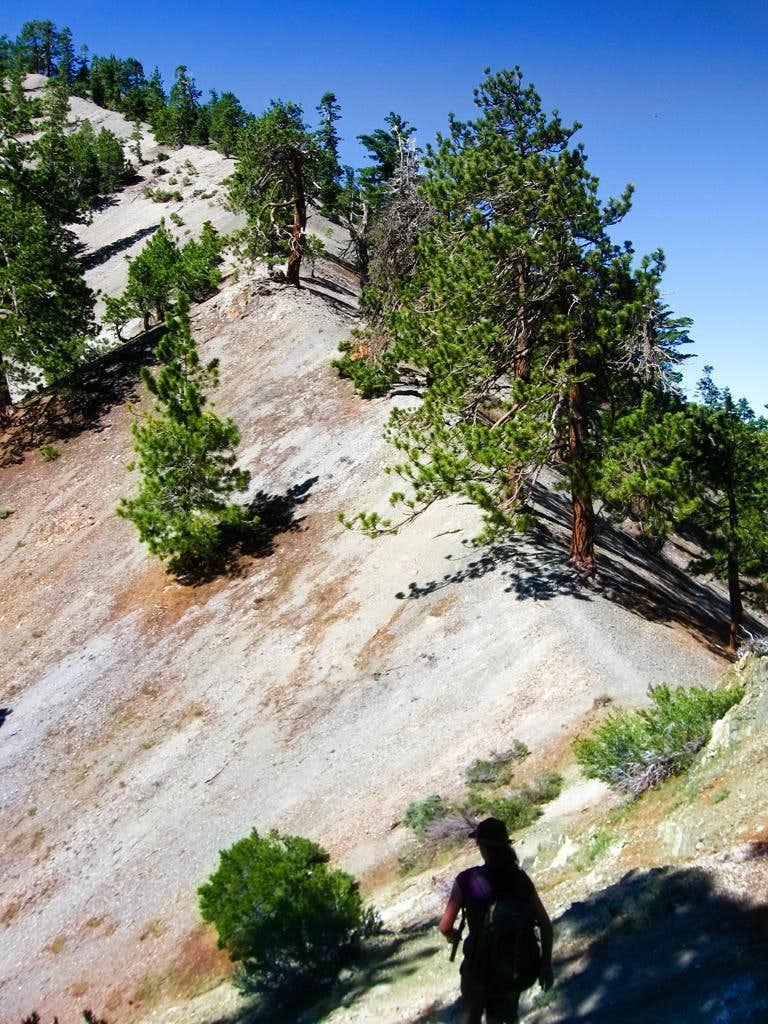 North Backbone Trail