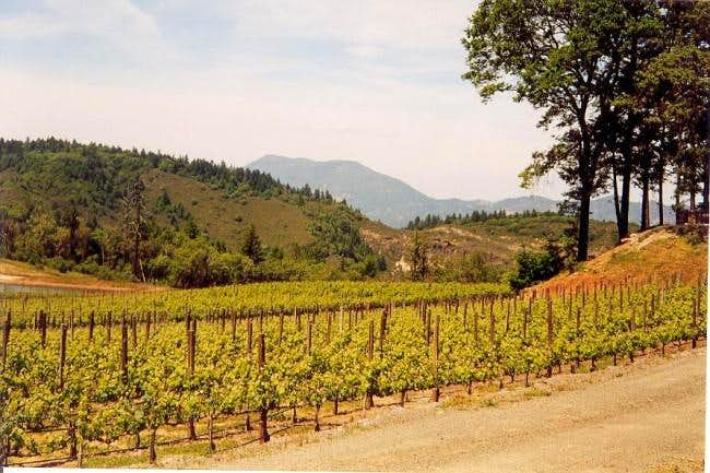Mount Saint Helena from the...