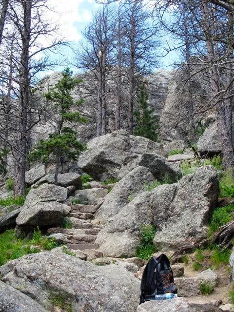 Summit Approach to Harney Peak