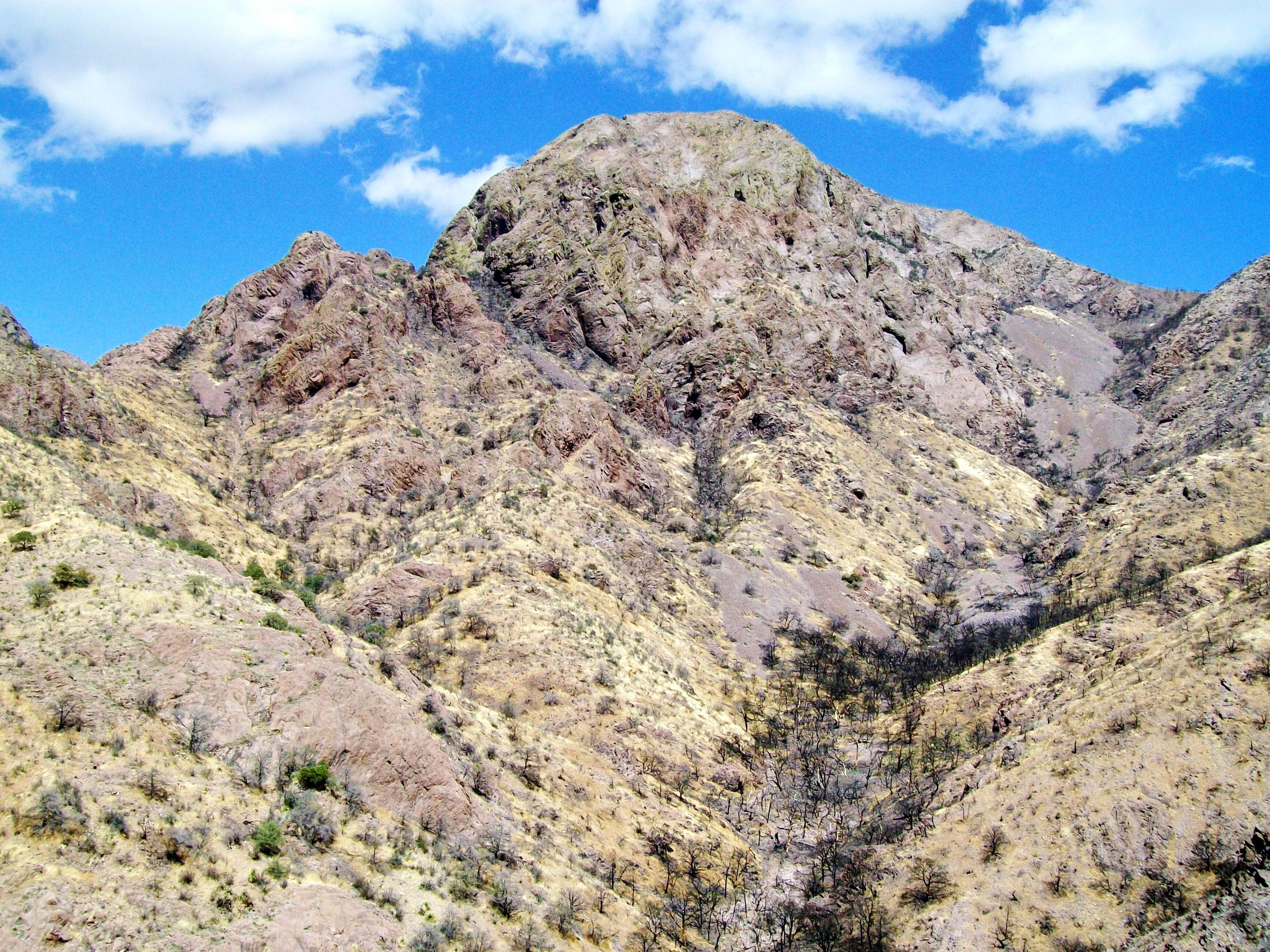 Baldy Peak (Organ Mountains)