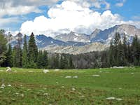 Pole Creek Meadow