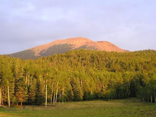 Baldy Mountain. July 2003