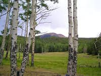 Baldy Mountain. July 2003.