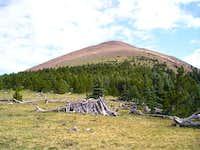 Baldy Mountain. July 2003