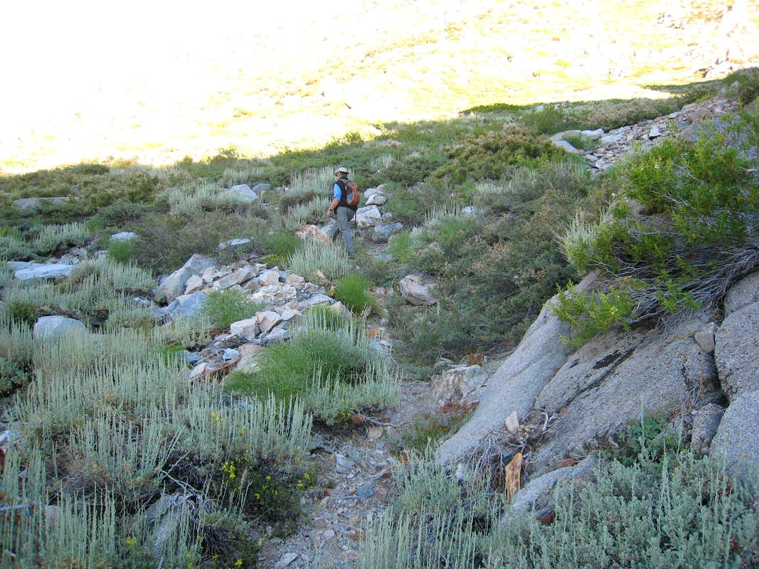 Hiking Up the Lower Part of the Gully