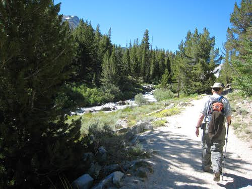 On the Trail to Mono Pass