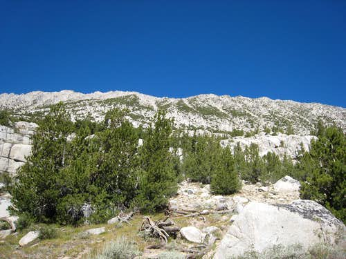 Southeast Slope of Mt Starr