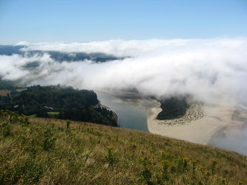 Above the clouds on Cascade Head