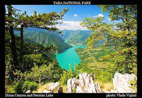 Tara summit view to Drina Canyon