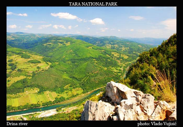 Tara view to Drina River