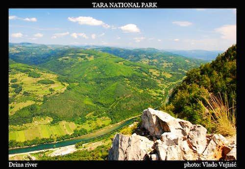 Tara view to Drina River