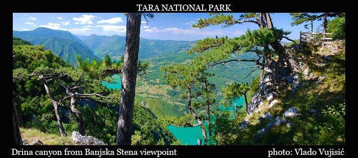 Tara summit view
