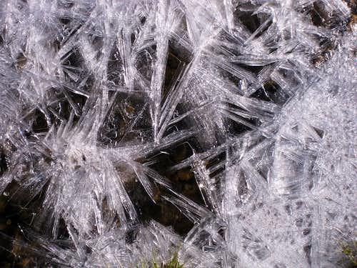Morning Ice
