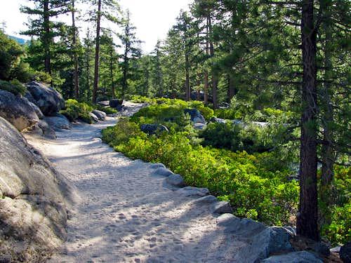 Sandy Muir Trail