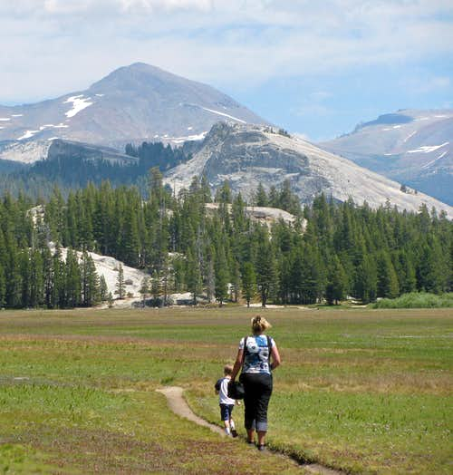 Tuolumne Meadow hike