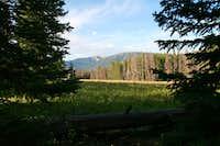 Campsite WF1 along Black Butte Trail