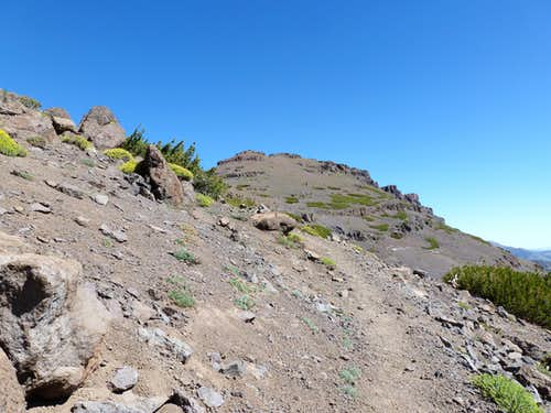 Looking back at Pacific Crest Peak from the PCT