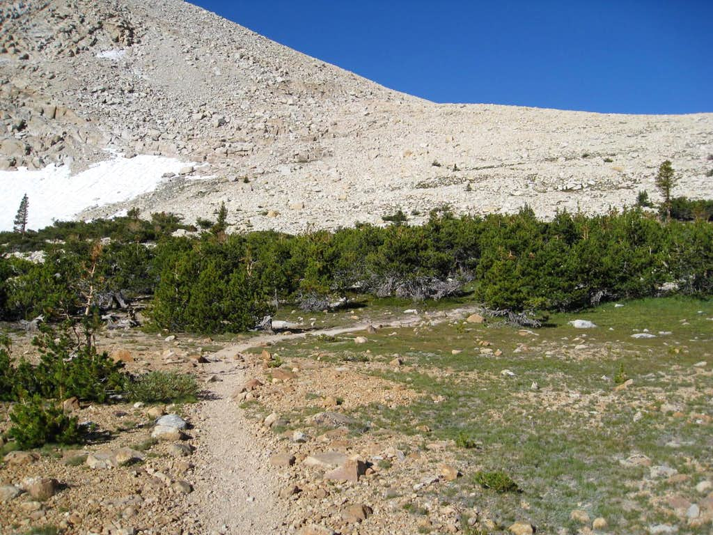 Trail to New Army Pass