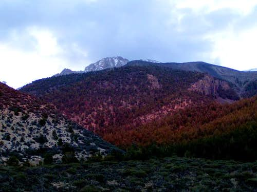 Mt Borah from the trailhead,...