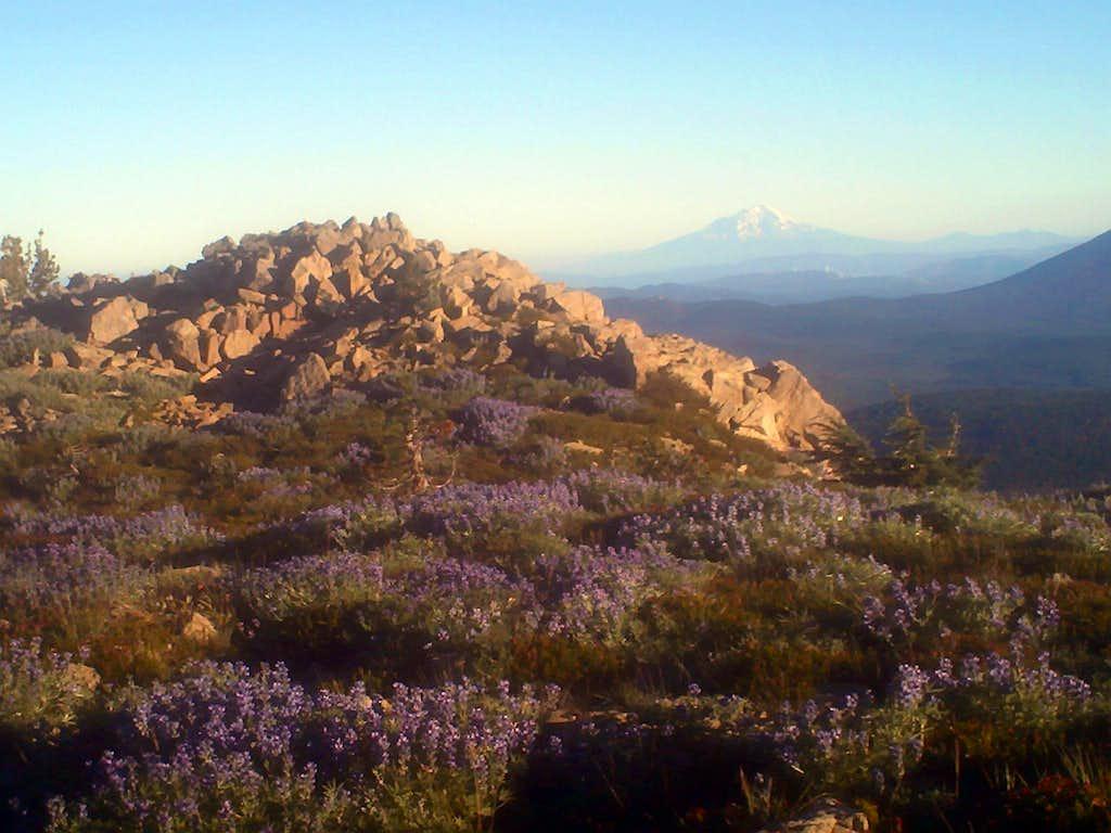 The summit area of Eagle Peak