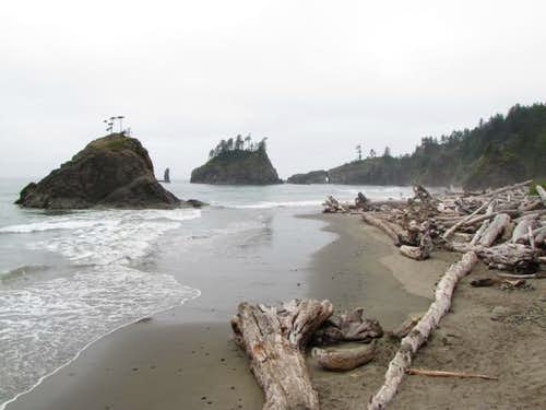 Second or Third Beach, Olympic Coast