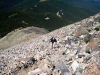 West Spanish Peak - Steve ascending