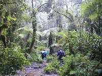 first day on Machame route...