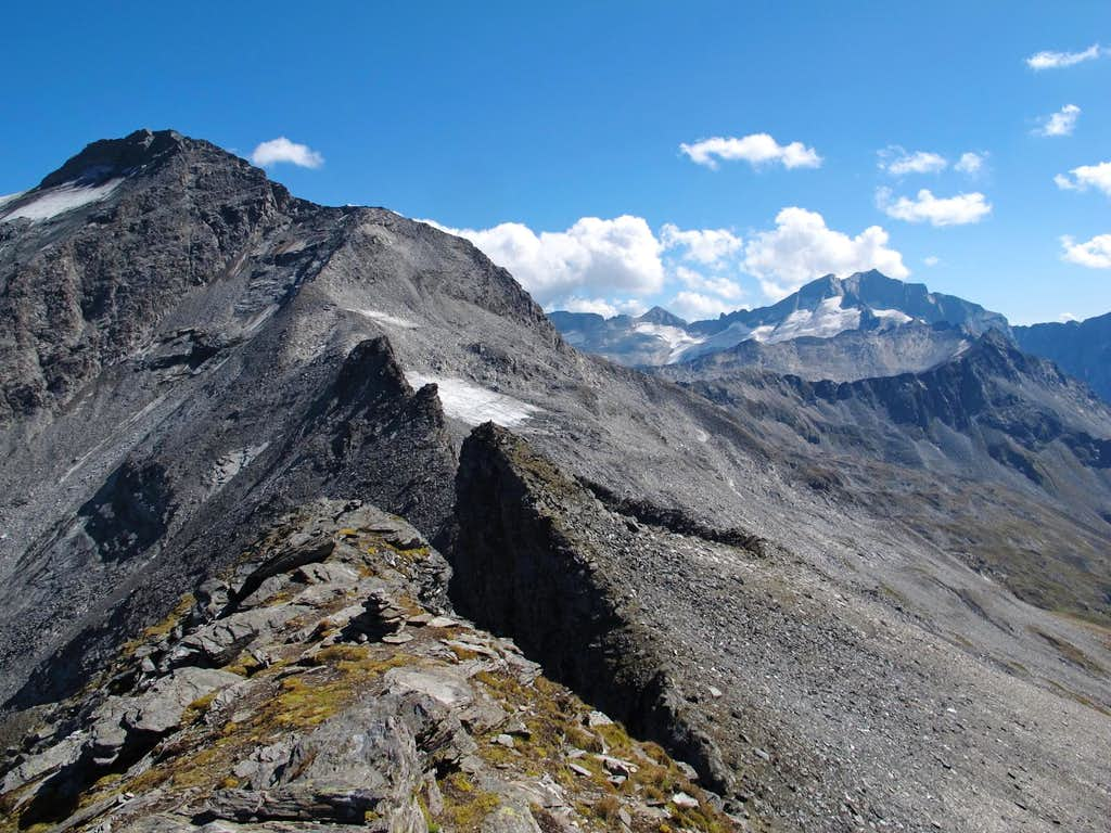 Ankogel and Hochalmspitze seen from the summit of Grauleitenspitze