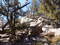 Summit area boulders