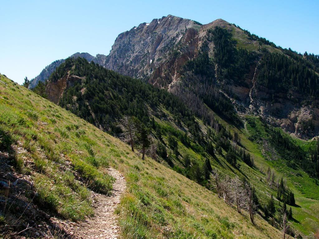 Deseret Peak from north ridge trail