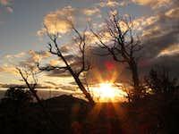 Sunset scrub