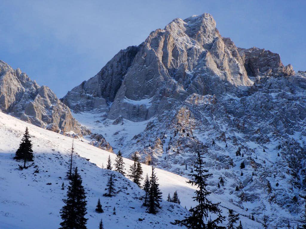 Mt. Packenham from Hood Creek.