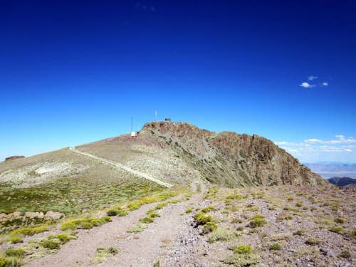 The summit of Mount Lewis (NV)