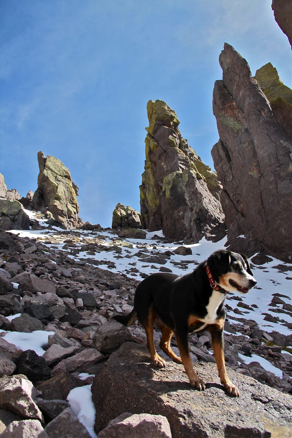 Duchess posing in the NW couloir