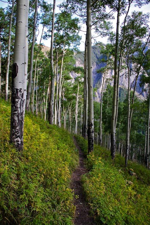 Weehawken Trail